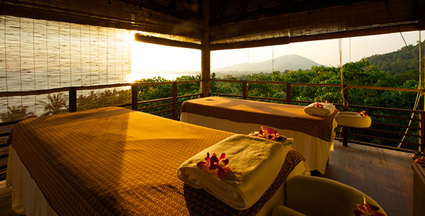 ayurveda the bodyholiday