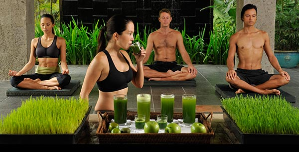 Experience Juice Fasting at Absolute Sanctuary