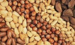 Superfoods: nuts