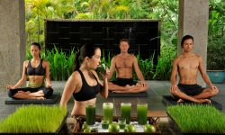 The Farm, the Philippines - Meditation and juice fasting