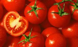 Superfoods: tomatoes